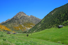 Vall d'Incles (Andorra) lizenzfreie stockfotos