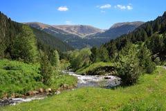 Vall de Ransol (Andorra). Mountain stream in Vall de Ransol (Pyrenees, Andorra Stock Photos