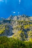 Vall?e en montagnes d'Alpes pr?s de Koenigssee, Konigsee, parc national de Berchtesgaden, Bavi?re, Allemagne image stock