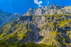 Vall?e en montagnes d'Alpes pr?s de Koenigssee, Konigsee, parc national de Berchtesgaden, Bavi?re, Allemagne photos libres de droits