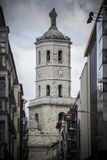 Valladolid cathedral Stock Photo