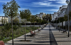 Valladolid I walk with trees Royalty Free Stock Photography