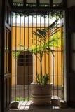 Valladolid, Yucatan Stock Image