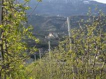 Vallagarinavallei in de trentinolente Stock Foto