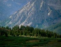 Vallar av Sawatchen spänner från Brown& x27; s-passerande, college- maximumvildmark, San Isabel National Forest, Colorado Royaltyfri Bild