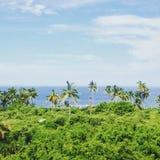 Vallarta海滩 免版税图库摄影