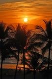 vallarta захода солнца Стоковое фото RF