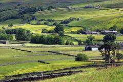 Vallate del Yorkshire - terreno coltivabile - l'Inghilterra Immagine Stock Libera da Diritti