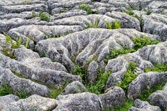 Vallate Inghilterra di Yorkshire della baia di Mahlam della pavimentazione di calcare Fotografie Stock