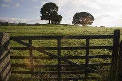 Vallate Yorkshire Inghilterra di Yorkshire Immagini Stock Libere da Diritti