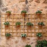 Valldemossa Calle de Palma de Mallorca Old European adornada con las flores frescas Fotografía de archivo libre de regalías