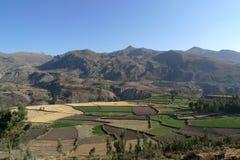 Valle 4 de Colca Foto de archivo libre de regalías