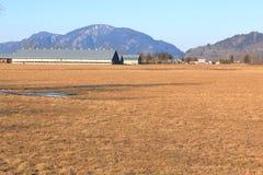 Valle agrícola plano en Columbia Británica meridional foto de archivo libre de regalías