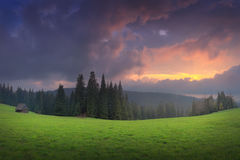 Valle alpina verde nella sera Immagini Stock Libere da Diritti