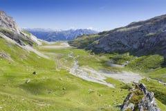 Valle alpina verde piana Immagini Stock Libere da Diritti