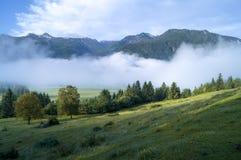 Valle alpino en la niebla de la mañana, sobre el lago Bohinj Foto de archivo libre de regalías
