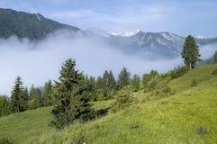 Valle alpino en la niebla de la mañana, sobre el lago Bohinj Fotografía de archivo libre de regalías