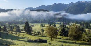 Valle alpino en la niebla de la mañana, sobre el lago Bohinj Imagenes de archivo