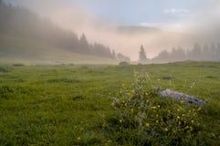 Valle alpino en la niebla de la mañana, sobre el lago Bohinj Fotos de archivo
