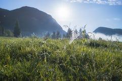 Valle alpino en la niebla de la mañana, sobre el lago Bohinj Imagen de archivo libre de regalías