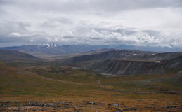 Valle ancho con la hierba amarilla en la meseta de Ukok, debajo de un cielo dramático del abatimiento nublado Foto de archivo
