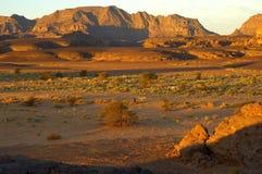 Valle ancho del lecho de un río seco el sol de oro de la mañana Imagen de archivo libre de regalías