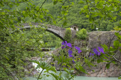 Valle Anzasca, Ceppo Morelli fotografia stock