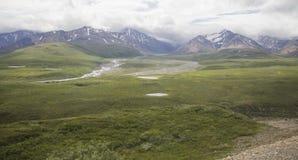 Valle arrebatador del parque nacional de Denali Imagen de archivo libre de regalías