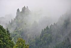 Valle boscosa nebbiosa nelle alpi austriache con il mezzo picco visibile nei precedenti Fotografie Stock