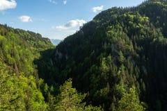 Valle, bosque, hermosa vista, naturaleza pura, Tatras del oeste, Eslovaquia Imágenes de archivo libres de regalías