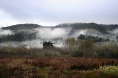 Valle brumoso Fotos de archivo