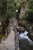 A valle in cascata di Datanla in Dalat, il Vietnam con la via in tutto la foresta Immagini Stock Libere da Diritti