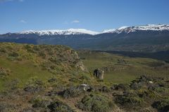 Valle Chacabuco in northern Patagonia, Chile. Landscape of snow capped mountains and green hills in Valle Chacabuco in northern Patagonia, Chile Stock Photo