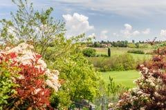 Valle colorido de Toscana Foto de archivo libre de regalías
