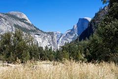 Valle con erba dorata alta con le scogliere del granito nei precedenti Fotografia Stock