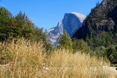Valle con erba dorata alta con le scogliere del granito nei precedenti Fotografie Stock Libere da Diritti