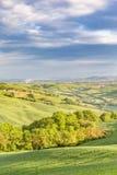 Valle con gli alberi ed i campi Immagini Stock Libere da Diritti
