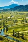 Valle con i campi ed il fiume immagine stock