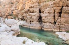 Valle con un fiume e le alte scogliere Immagini Stock