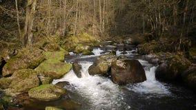 Valle de Aist en Austria en caída almacen de video