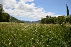 Valle de Benasque Castejon De Sos Widok krajobrazy Zdjęcie Royalty Free