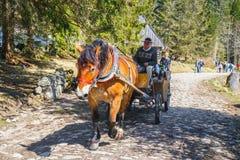 Valle de Chocholowska de la visita de los turistas de Unidefined Foto de archivo libre de regalías