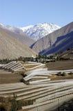 Valle de Elqui, Chile Fotografía de archivo