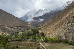 Valle de Elqui, pieza de los Andes del desierto de Atacama Fotos de archivo