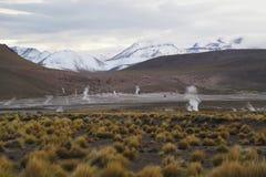 Valle de géiseres del campo del EL Tatio situado en el desierto de Atacama Foto de archivo libre de regalías