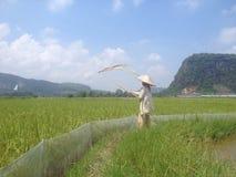 Valle de Harau Fotografía de archivo