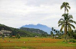 Valle de Harau en Sumatra del oeste, Indonesia imagen de archivo