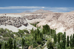 Valle de Jerez, Atacama, Chile Royalty Free Stock Photos