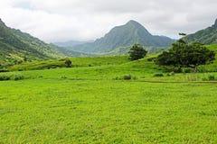 Valle de Ka'a'awa en el rancho de Kualoa Fotografía de archivo libre de regalías