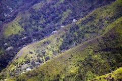 Valle de Kalalau, Kauai, Hawaii foto de archivo libre de regalías